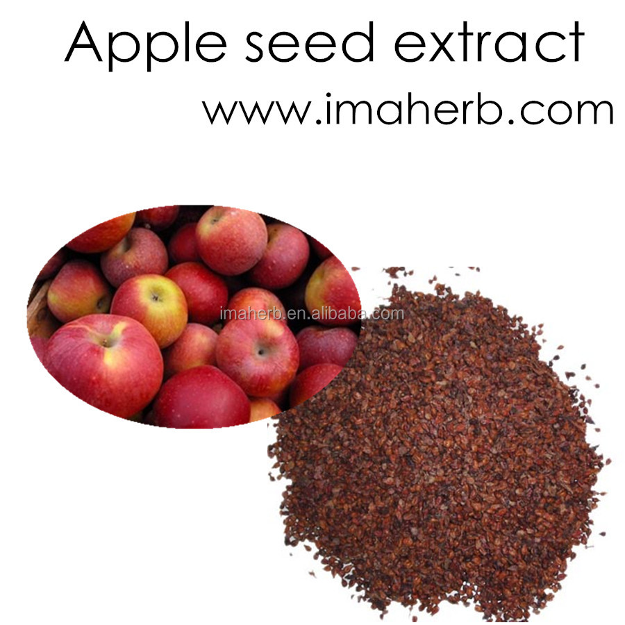 Top Grade natural apple seed extract