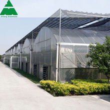 low cost greenhouse double arch double film greenhouse agriculture greenhouse for sale