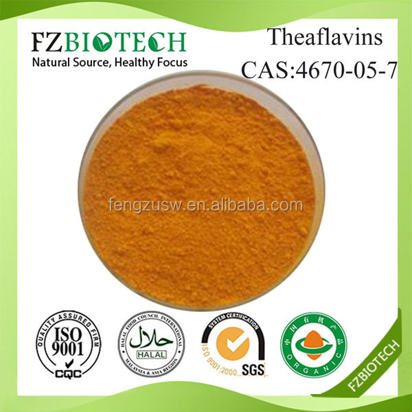 FZBIOTECH Bulk Best Nature Black Tea Extract 40% Theaflavins Powder