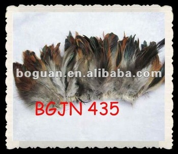 "5-6"" Wholesale rooster tail feather"