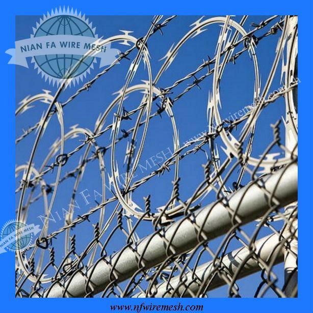 Concertina Razor Barbed Tape Wire( factory)