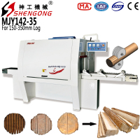 Shengong Multi Rip Saw Machine
