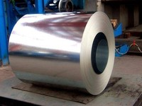 Low Price Color Coated Steel Coils/Prepainted Steel Coils PPGI Roofing Materials