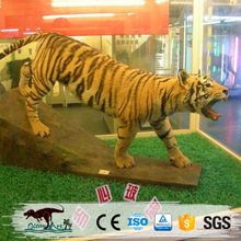 OA8249 Amusement Jurrasic outdoor equipment realistic tiger animal statue for sale