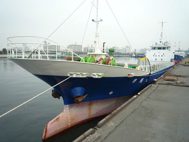 GC00019994 DWT 705 General cargo vessel