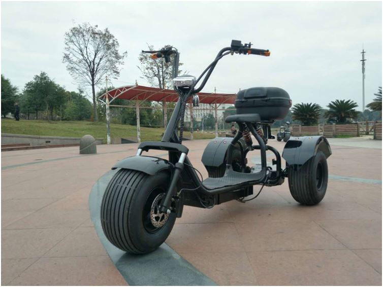 2017 citycoco 3 wheels 200km off road 125cc trike scooter for delivery with CE