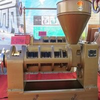 Automatic equipment corn jatropha oil press machine