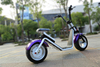 smart 2 wheel electric scooter 2 wheel electric standing scooter high speed / power (S51)