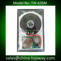 Waterproof programmable music chip,voice module