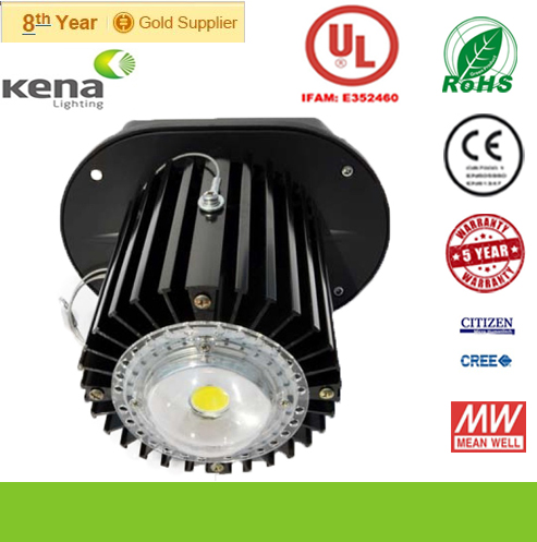 UL CREE, CITIZEN Meanwell Driver 110W LED Highbay Light IP65