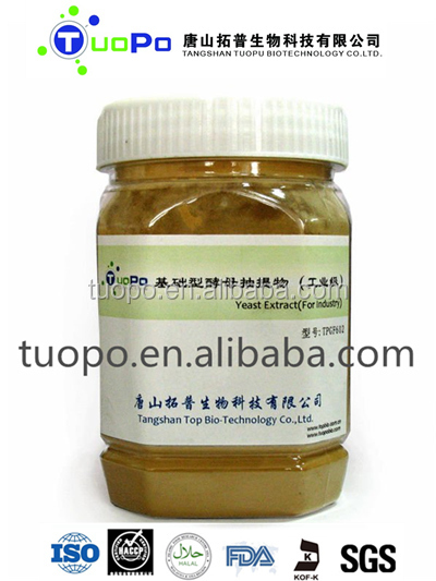 inactive dry yeast extract/ brewers yeast extract/yeast extract powder