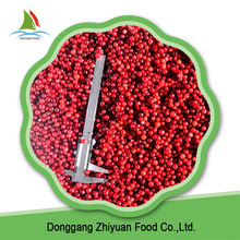 Good Quality Iqf Frozen fruit Lingonberry Red And Delicious Berry