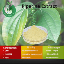 Piperine Oil/Piperine Pepper Extract Powder/Piperine Extract