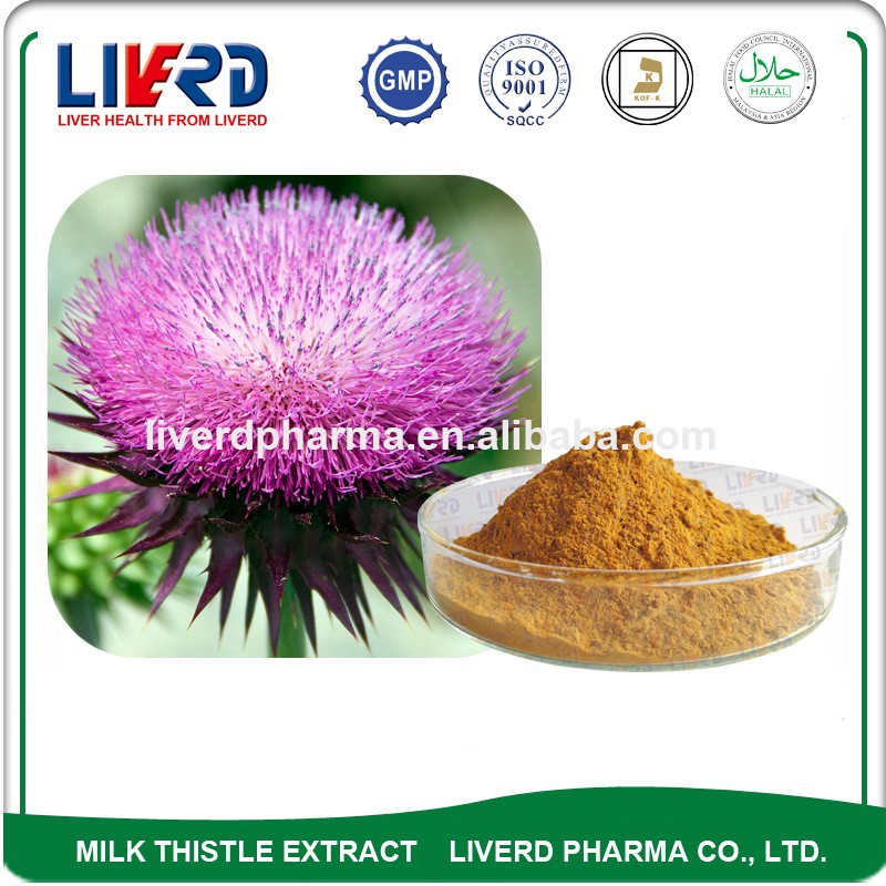 30:1 Plant Extract Milk Thistle Powder for Hepar