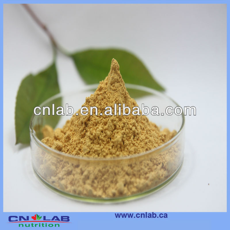 100% nature panax red ginseng