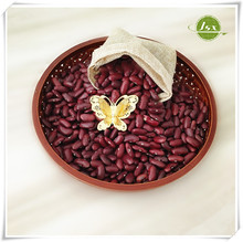 JSX Dark Red Kidney Beans Best Import Opportunities