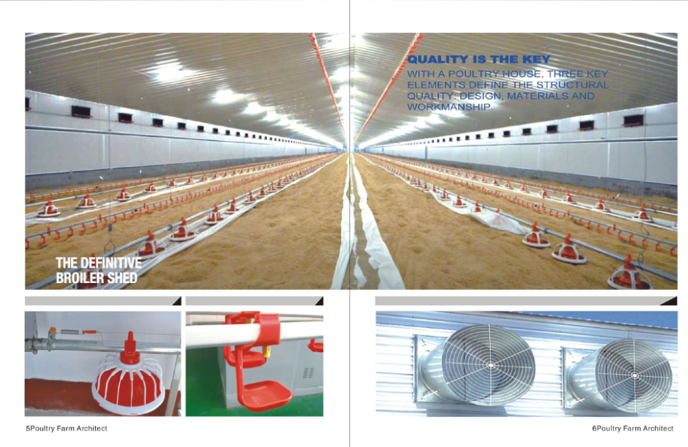 light frame steel structure poultry house with automatic poultry farming equipment
