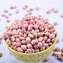 Agriculture kind beans product bulk dried beans butter beans