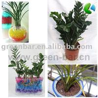 plant retaining crystal gel food
