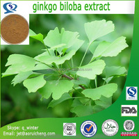 factory directly supply health care product ginkgo biloba leaf extract powder