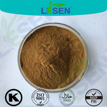 Natural Burdock Root Extract powder