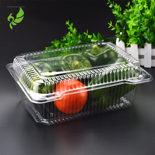 Safety Food Grade Custom Design Clear Plastic Clamshell Packaging Containers for Fruit