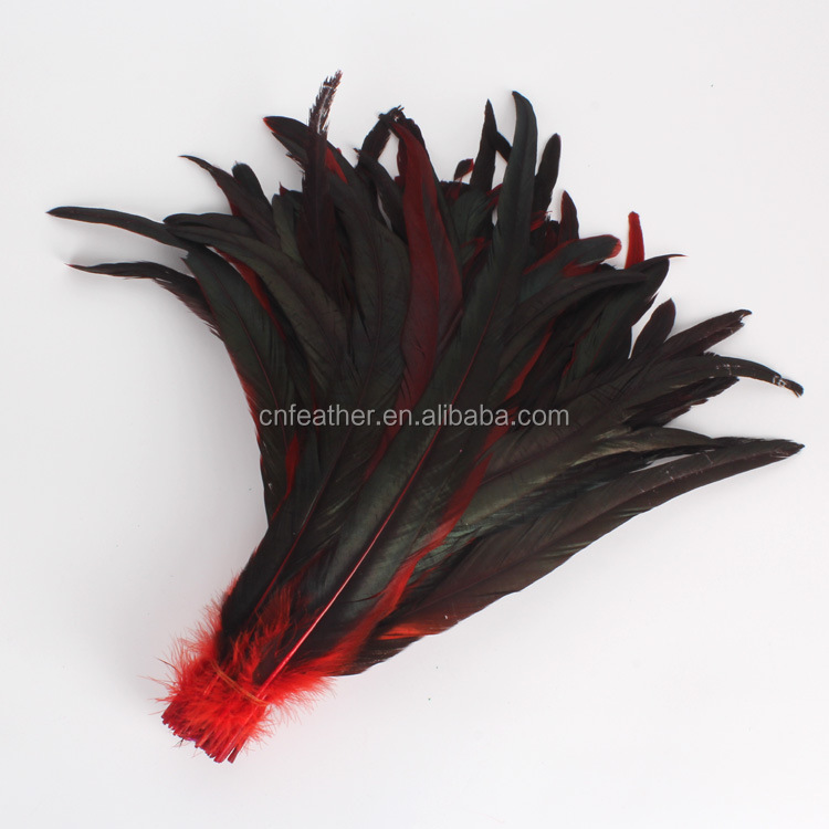 Direct Dyed 12-14inches Rooster / cock tail Feathers for garment / hats / stage decoration