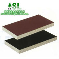 Film Faced Shuttering Plywood commercial plywood 18mm poplar core with best quality and best price from China