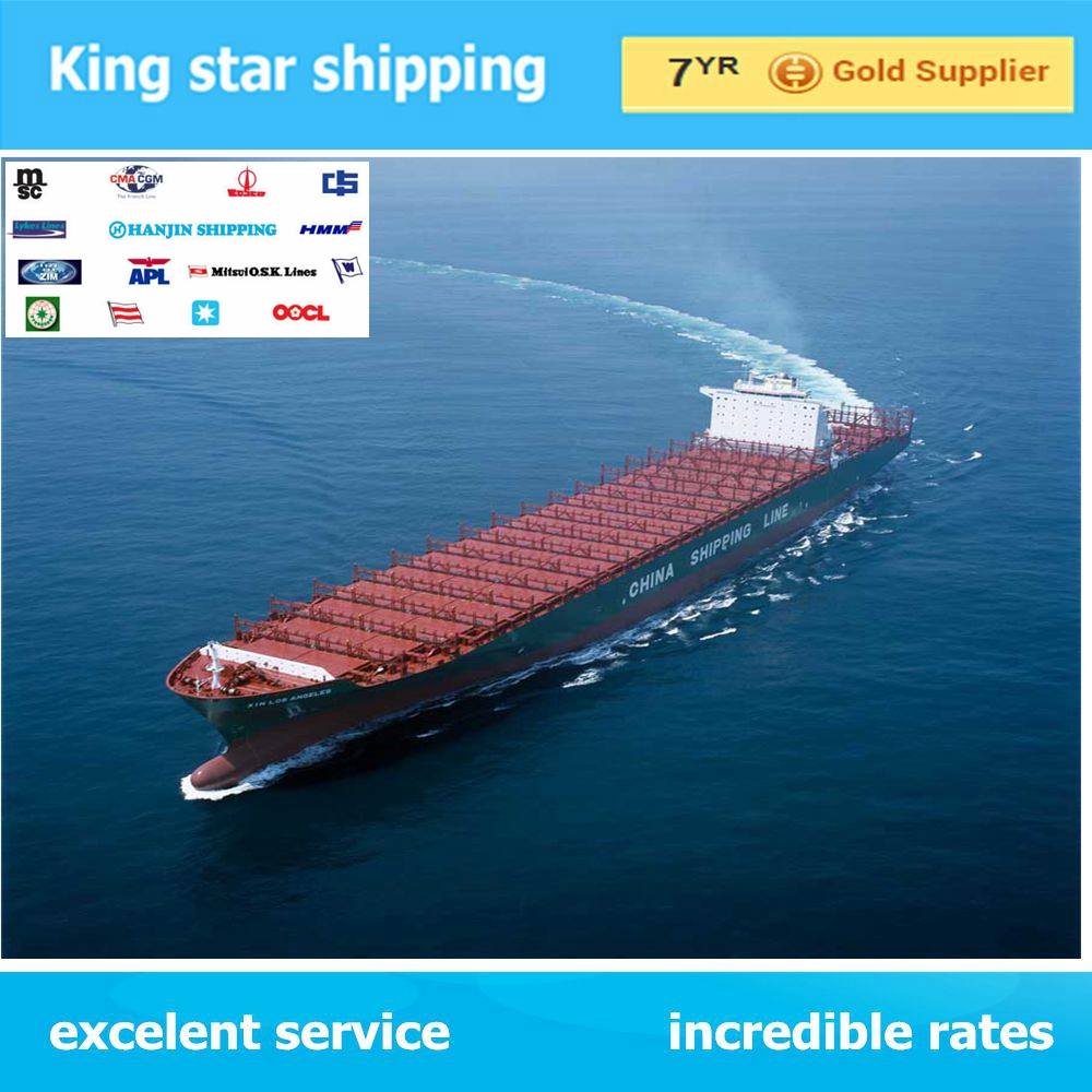 Cheapest sea freight rates/best sea freight service from China to Hamina
