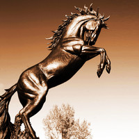 High Quality Antique Brass Horse Statue for Garden Decoration