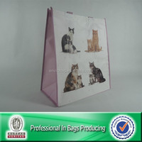 High Quality Custom Cheap PP Non Woven Folding Tote Bag