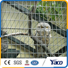 Factory price Standard size 2x2 galvanized welded wire mesh for Architectural