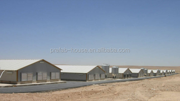 Steel structural dairy farm shed, dairy farming shed designs