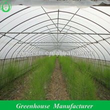 Uv Film Single Span Greenhouse