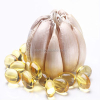 Oem service accepted garlic extract allicin garlic oil softgel capsule