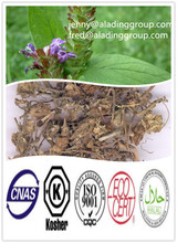 High Quality Natural Plant Extract Common Selfheal Spike Extract P.e. 10:1