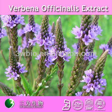 Pure vervain extract supplier