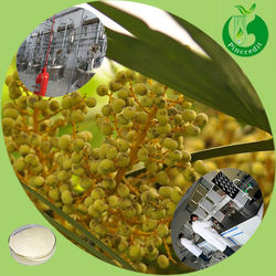 2014 manufacturer supply 25% fatty acid/saw palmetto extract
