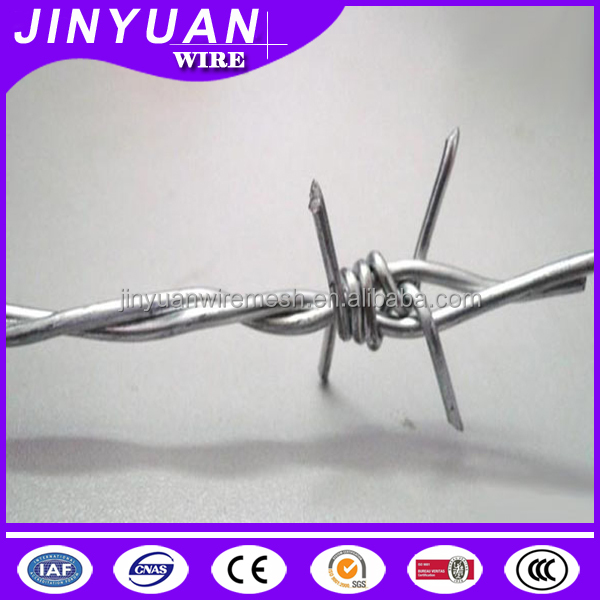 2.5mm wire diameter Electro/Hot-dipped galvanized wire and PVC coated Barbed Wire for fence