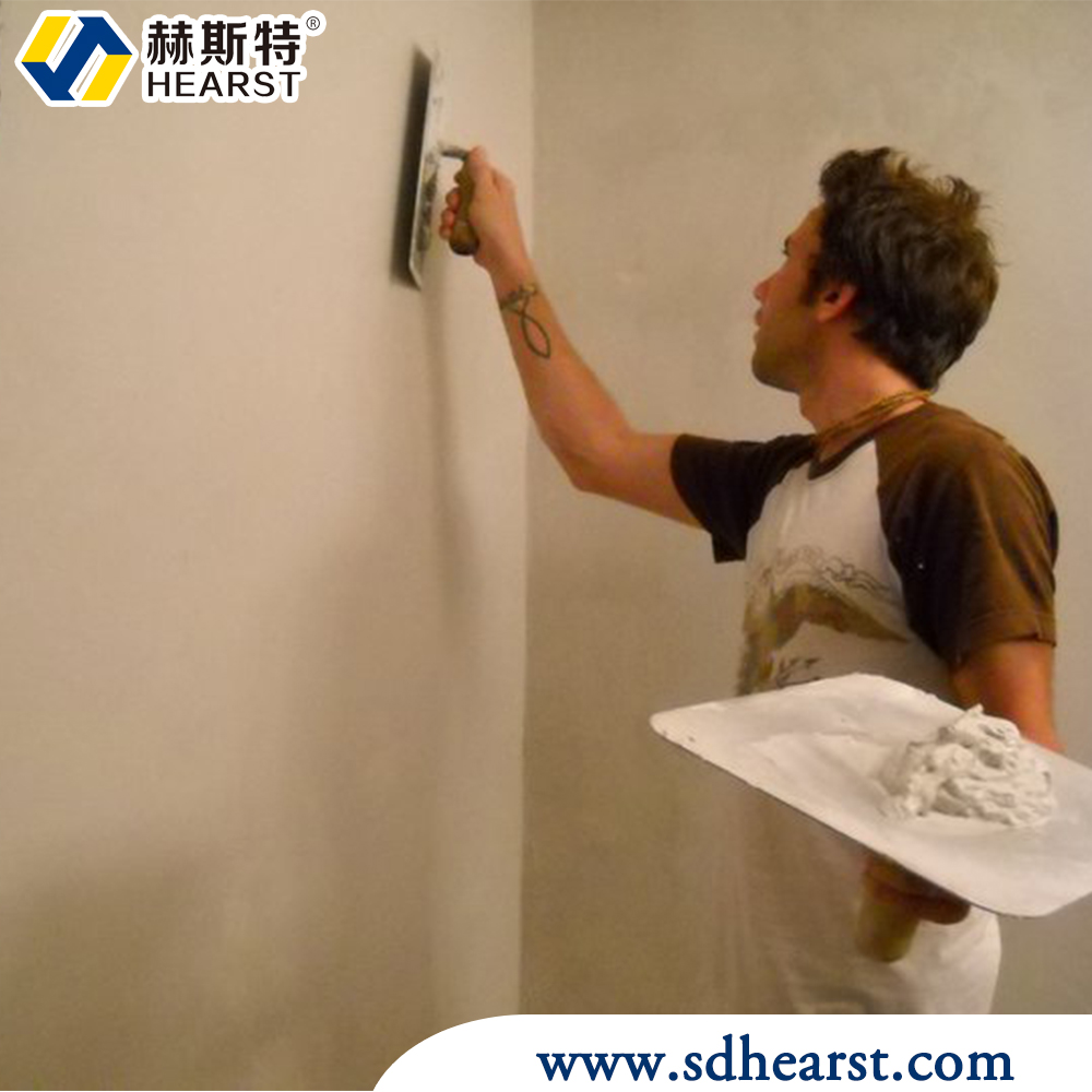 Cement Based Paint Additive Redispersible Polymer Powder/VAE Copolymer Powder