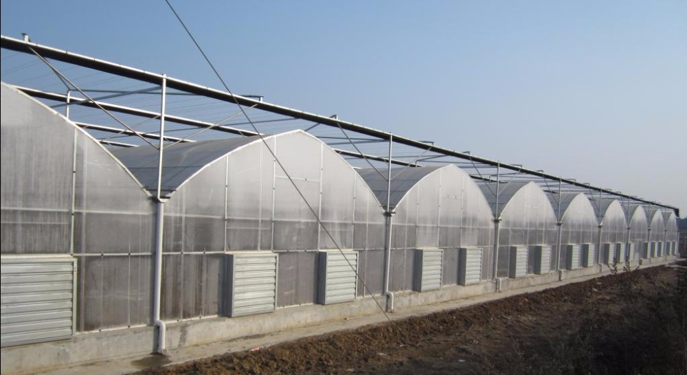 polycarbonate sheet solar greenhouse