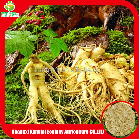 Food additive and Pharmaceutical plant extract Ginseng extract