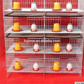 price poultry chicks/chicken cage for sale