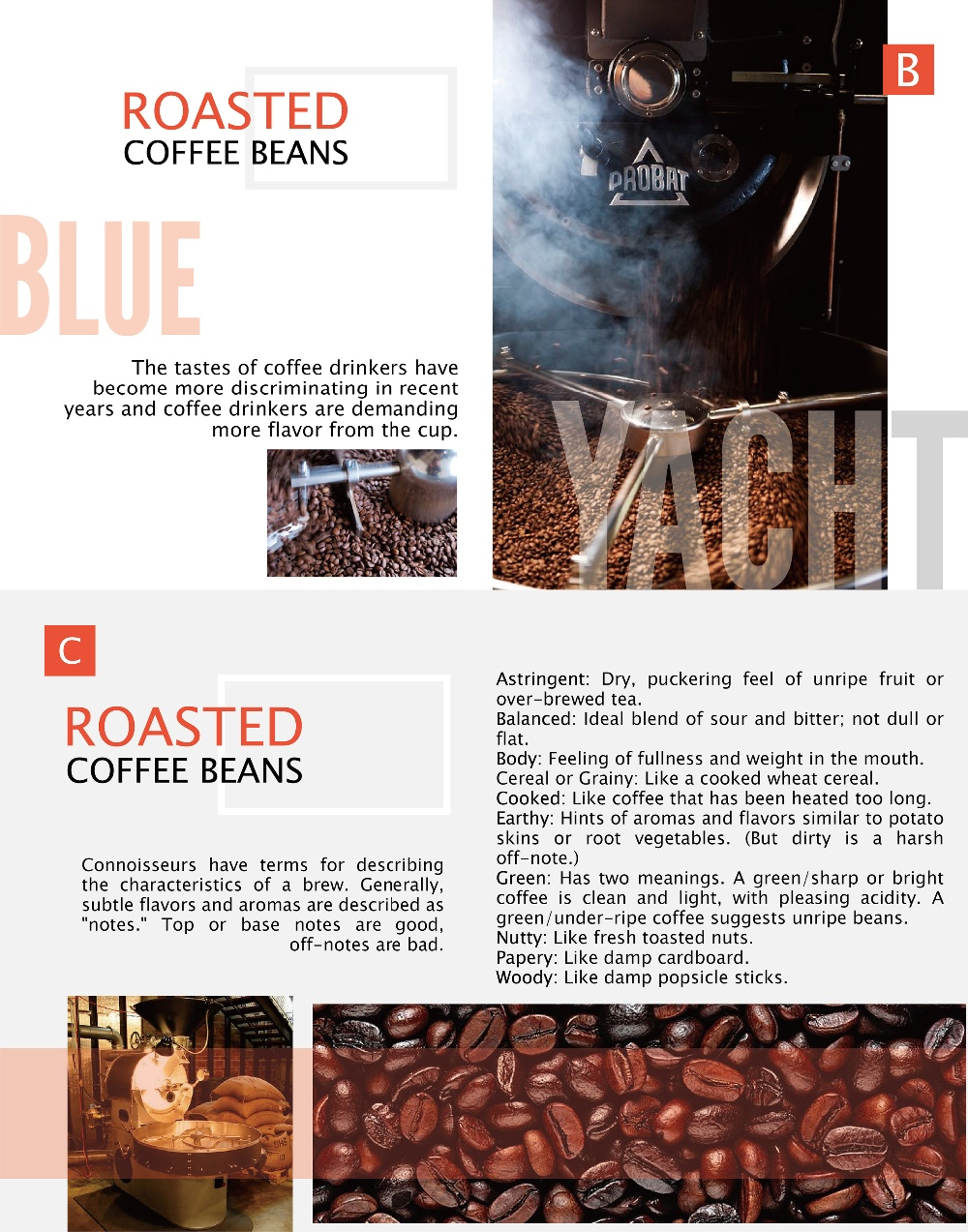 Blue Mountain Flavor - 100% Arabica Roasted Coffee Beans
