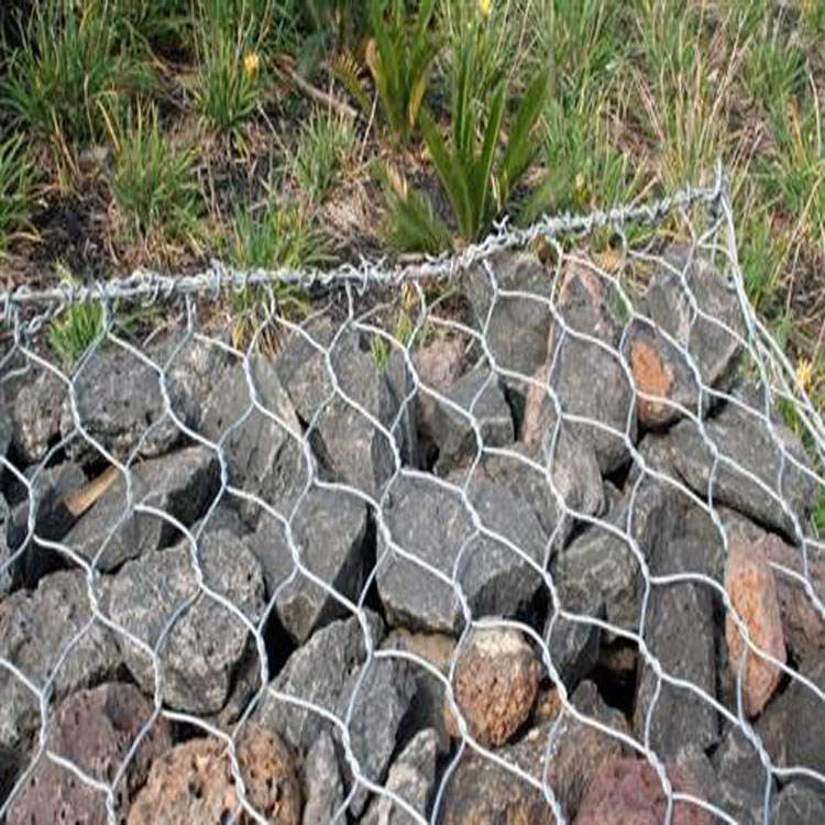 Hot sale 10 gauge hot dipped galvanized hexagonal wire mesh with good quality