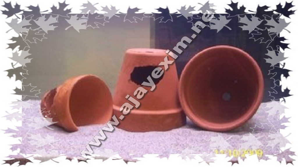 Clay Mini Fish Breeding Tank