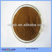 GMP/Haccp/ISO9001 Factory Provide 100% Natural Cassia Nomame P.E. in High Quality