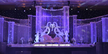 3M*3M fiber optic led string light and light stage curtain
