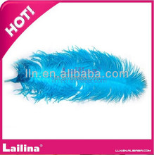 Fashion 15cm-80cm Dyed Ostrich Feather/ Lailina Table Decoration Feather Wedding/Party