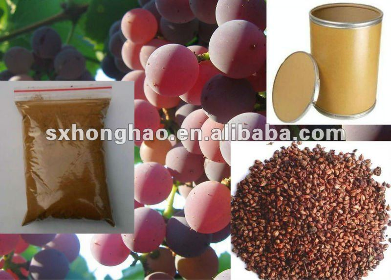 Anti-oxidant Product Grape Seed Extract Proanthocyanidin Powder